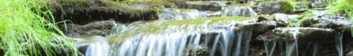 Село Скоморохи розташоване над річкою Стрипа за 18 км. від м. Бучач. Тут проживає 1199 осіб, займаючи територію 2.782 км. кв. Сюди їздять рейсові автобуси від районного центру.  Перша писемна згадка про Скоморохи датується 1439 р. У I половині 20 ст. ді�. Фото  1