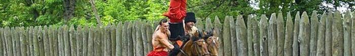Гуляйполе - місто в Запорізькій області. Розташоване на річці Гайнур, межує з Дніпропетровською областю (на півночі) та з Донецькою (на сході). Засновано Гуляйполе 1785 року, як форпост. З 1938 року Гуляйполе має статус міста. Населення становить 14556 ж. Фото  4