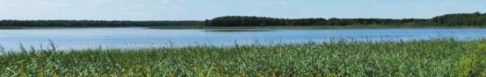 Wołyniu położony w północno-zahidniychastyni Ukrainy, graniczy od północy Republiki Białorusi i Republiki Polskiej na zachodzie. Kwadratowych powierzchni ok. 20.143 km2 i ludności na 01.06.2012 Volynistanom wynosiła około 1.039.000 mieszkańców. Klimat Volyn oblastipomirno kontynentalny, średnia temperatura stycznia -4 ° C, w lipcu 17 ° C.  W ukraińskich pieśni ludowych Wołyńskaja obłast często. Photo  2