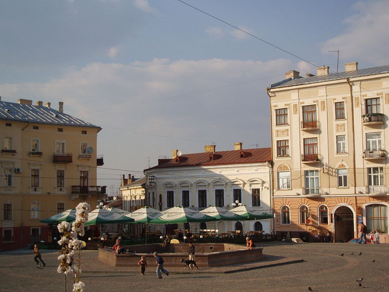 Security services in Chernivtsi and region: a selection of sites