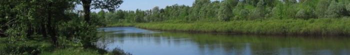 Жидачов - районный центр Жидачивского района Львовской области. Город расположен в юго-восточной части Львовской области, в 3 км. от места впадения реки Стрый в реку Днестр. Здесь проживает 11 204 человек. Территория Жидачева составляет 13 км. кв. Че�. Фото  1