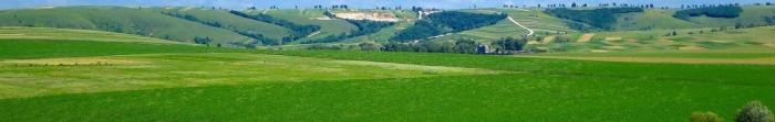 Wołków - wieś w powiecie, regionie Pustomytovskogo Lwów. To jest domem dla prawie 300 osób. Powierzchnia Rozliczenie to 1,79 km. kwadrat. Wioska znajduje się 22 km. z miasta, to ciekawe, że raz wszedł tu sam Iwana Franki.  Pierwsza pisemna wzmianka o wsi pochodzi z 1398 rok. Od czasów starożytnych, wioska wspólnota Wołków był aktywny. W szczególności, na początku XX wieku we wsi ce. Photo  2