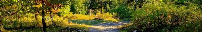Живописный район Ивано-Франковской области, с центром в древнем городе - Галич. Первое письменное упоминание датируется 1113 годом.  В Галицком районе проживает около 65 тыс. жителей. В крупнейшие города, по численности населения, относят Бурштын. Фото  3
