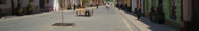 Черновцы является административным центром Черновицкой области и политическим, культурным и религиозным центром Буковины, находятся на юго-западе Украины за 40 км от границы с Румынией. Первое упоминание о городе датируется 1408 годом, хотя стар. Фото  3