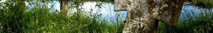 Красноїльськ - велике селище міського типу Сторожинецького району Чернівецької області, що знаходиться на відстані 20 км від районного та 40 км від обласного центру, та 8 км від кордону з Румунією. Згідно даних за 01.01.2011 у Красноїльську проживало п. Фото  2