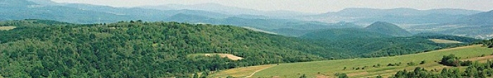 Nowosielica - miasto, regionalne centrum Novoselytskiy powiat, region Czerniowce, położony w pobliżu rzeki Prut i Rokitno. Powierzchnia miasta to 6,47 metrów kwadratowych. mil, a jej ludność z 01.01.2011 wyniosła ponad 7.800. Novoselytsia pierwszy wymieniony w dokumentach w 1456 i otrzymał status miasta w 1940 roku. Klimat tego regionu jest umiarkowany kontynentalny z ciepłym latem, łagodną zimą i dużo wilgoci. Generalnie mi. Photo  2