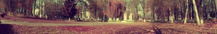 Кіцмань — місто, районний центр Кіцманського району Чернівецької області, знаходиться на березі ріки Совиці та знаходиться на відстані 22 км. від Чернівців. Найдавніша письмова згадка про населений пункт датується 1413 роком, кількість населе�. Фото  1