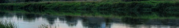 Корчів – село в Украні, Сокальського району Львівської області. Населення села становить близько 500 осіб. Село Корчів є ценром сільської ради.  Відомою особистістю села Корчів є відомий український історик та політичний діяч – Яворський. Фото  2