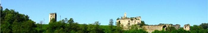 Селище міського типу Скала-Подільська було засноване 28 березня 1210 року. Через місто протікає річка Збруч. На сьогоднішній день тут проживає 4700 осіб.  З першої половини XIV ст. тут був оборонний дерев'яно-земляний замок. Так як у XVI ст. були части. Фото  2